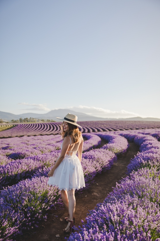 tasmania-bridestowe-estate-lavender-farm-travel-blog-4