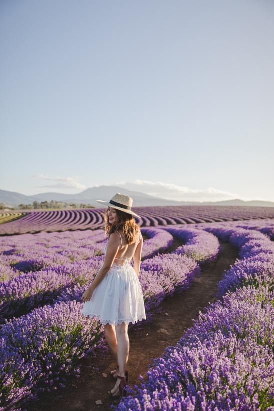 tasmania-bridestowe-estate-lavender-farm-travel-blog-4
